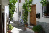 Village_house in Spain, Alpujarras: the front entrance