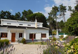 Villa Quinta do Floral