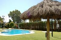Apartment in Spain, Puerto Banus: Swimming pool and garden area