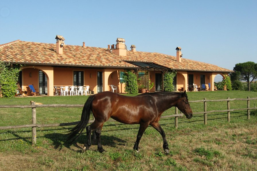 Owners abroad Countryside Villa Rental near Rome (La Villa)