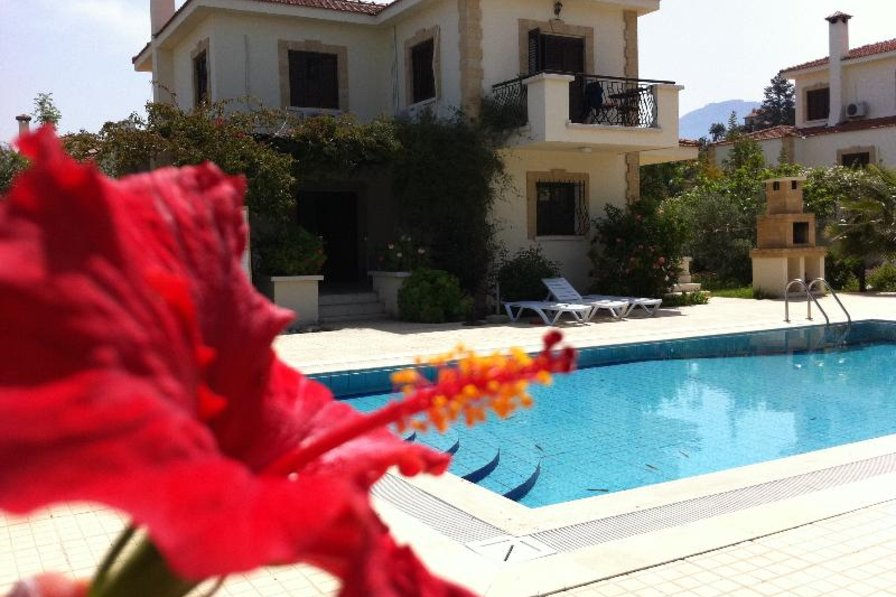 Owners abroad CAROB VILLA ,PRIVATE POOL LUSH GARDENS. OUTSIDE THE EURO