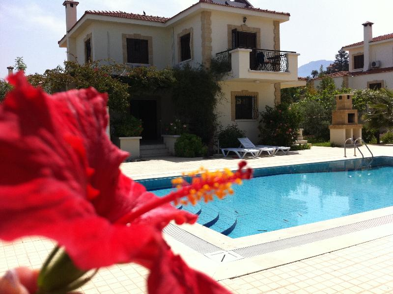 Villa in Cyprus, Catalkoy: villa view with large private overflow pool and BBQ