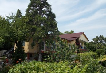 Villa in Bulgaria, Golden Sands: villa sequoia
