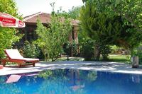 Villa in Turkey, Kaya Village: Ozlem Evi pool area surrounded by olives, fruit trees and roses.