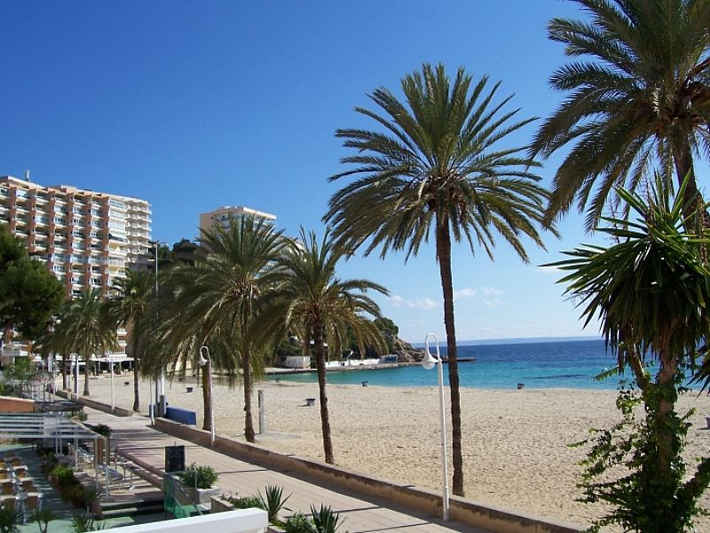 Apartment in Spain, Magaluf: magalluf beach