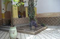 Riad in Morocco, Medina: little garden