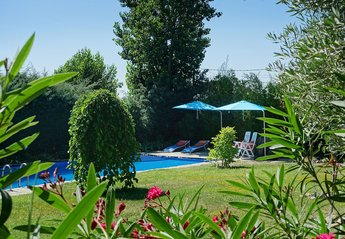 Apartment in Spain, El Boalo: The pool and garden in summer