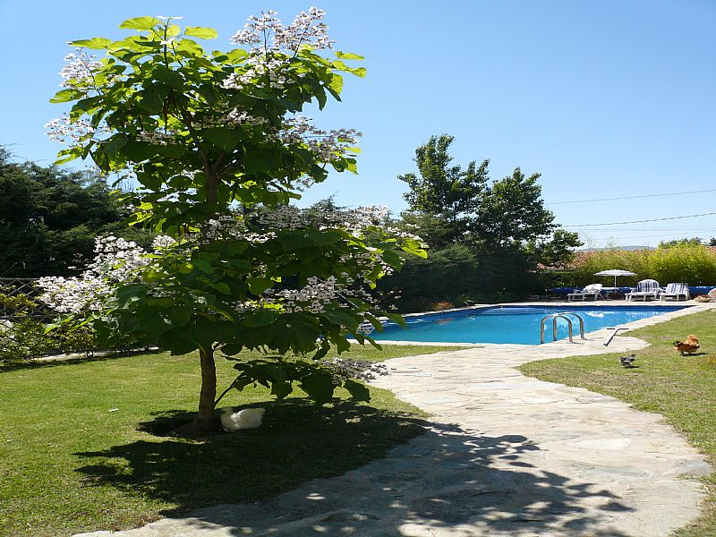 Apartment in Spain, Madrid province: The pool and garden