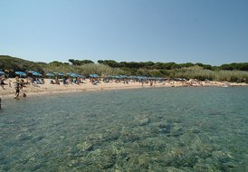 Comfortable Cottage-Apartment In Sardinia for 4 - 6 Guests