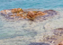 Crystal Clear Seas Along The Costa Paradiso