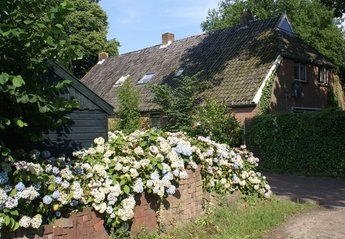 Farm House in Netherlands, Diever