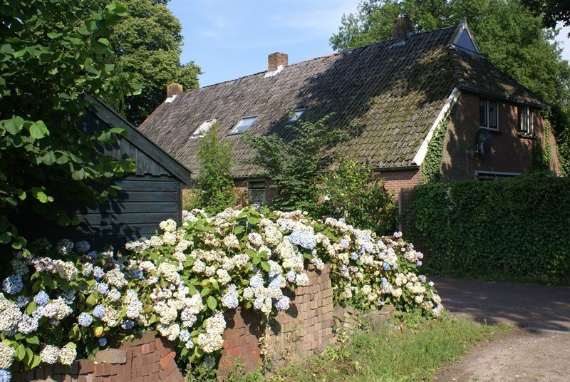 Owners abroad FARMHOUSE (1836) IN RURAL DRENTE, NETHERLANDS*ALL YEAR DISCOUNTS!