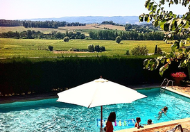 Country Villa on a Private Hill with Swimming Pool and Vinyard