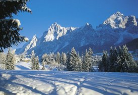 Cortina d'Ampezzo-Hotel Residence Borca - Atp Bilo - 4 pax