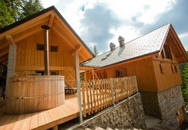 Wellness house Vila Triglav in the heart of Triglav national park