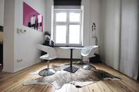 Apartment in Germany, Berlin: Living zone