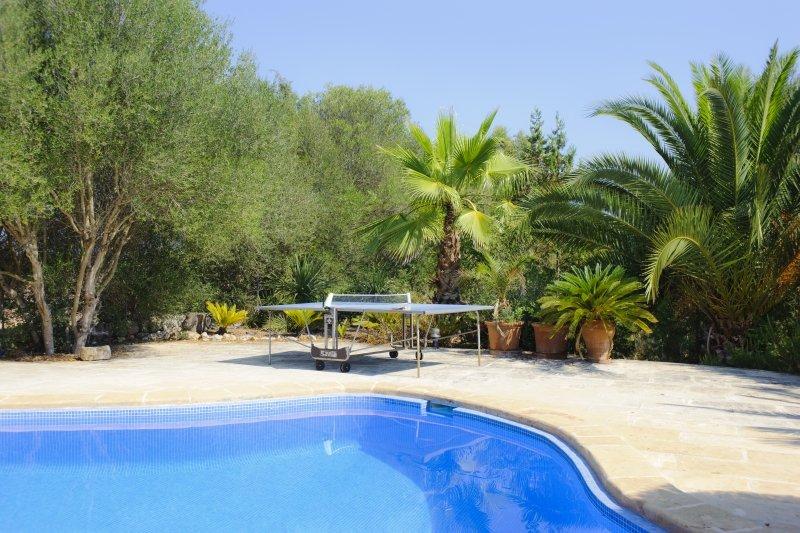 Villa in Spain, Cas Concos